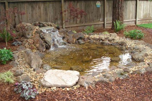 Pond_After