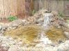 Pond_After_1