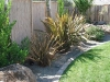 1167929818Landscaping_and_Boulders